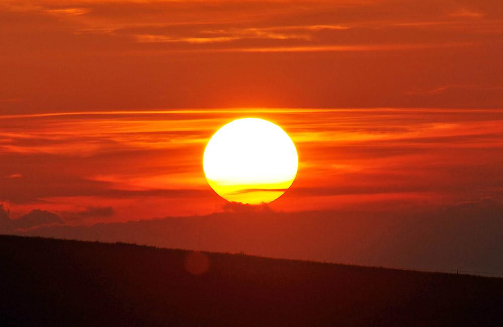 puesta de sol sin gluten de Proceli