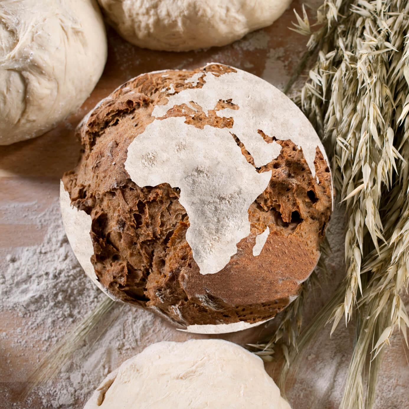 la celiaquia existe en todo el mundo Proceli sin gluten